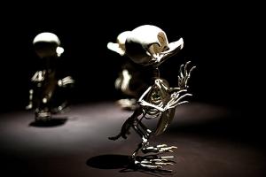 выставка-скелетов